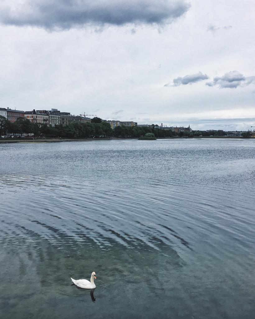 Kopenhag'da göller